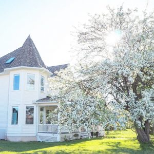 Apple Blossom House