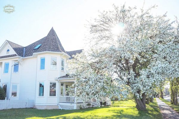 Apple Blossom House