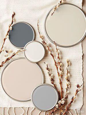 home interior Blush paint colours