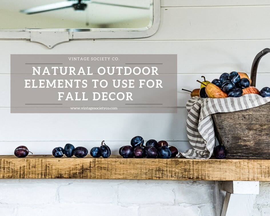 Favorite Outdoor Elements to use for Fall Decor