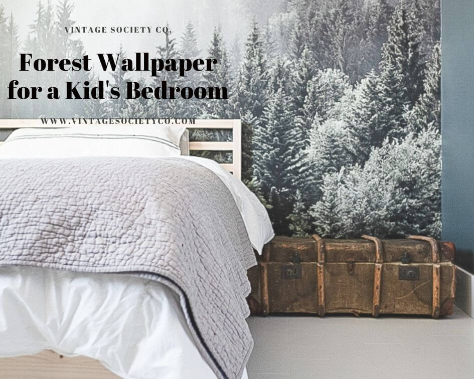 Forest Wallpaper for a Kids Bedroom
