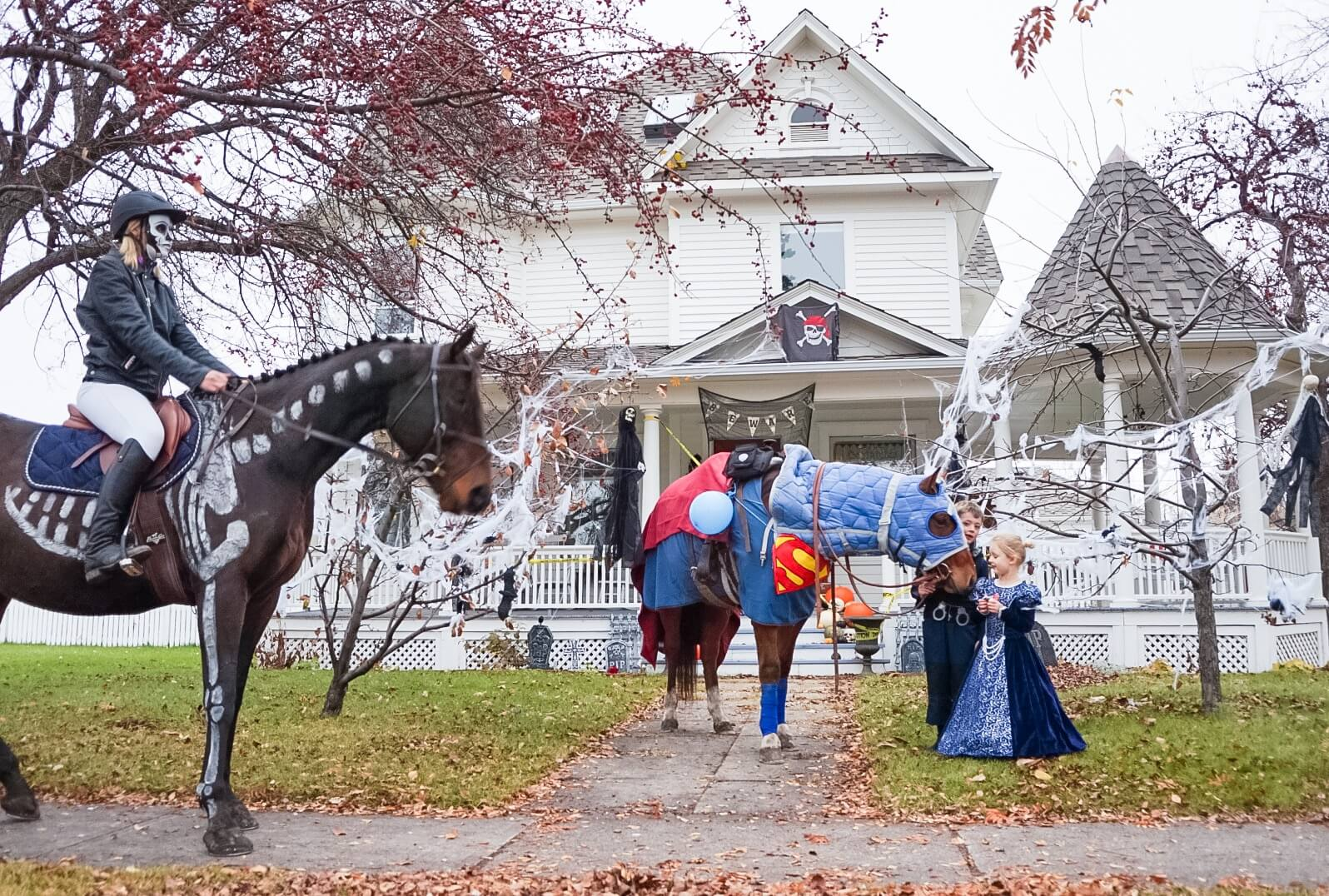 horses dressed up for halloween