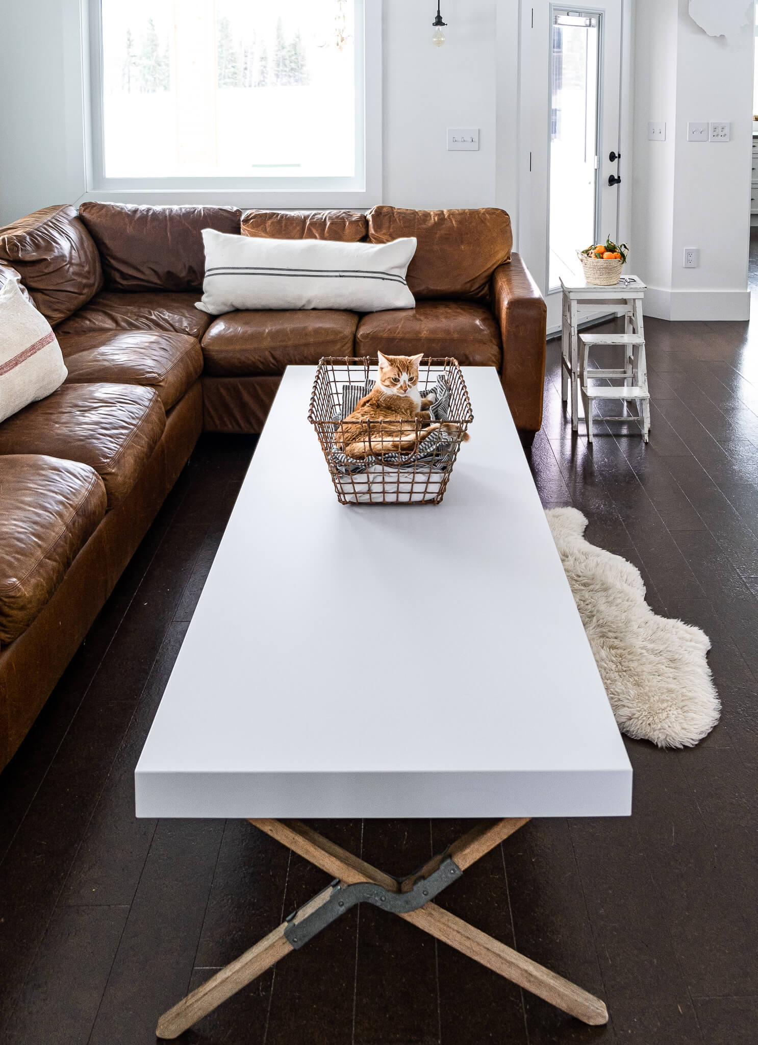 Quartz top wire baskets with cat napping as coffee table decor