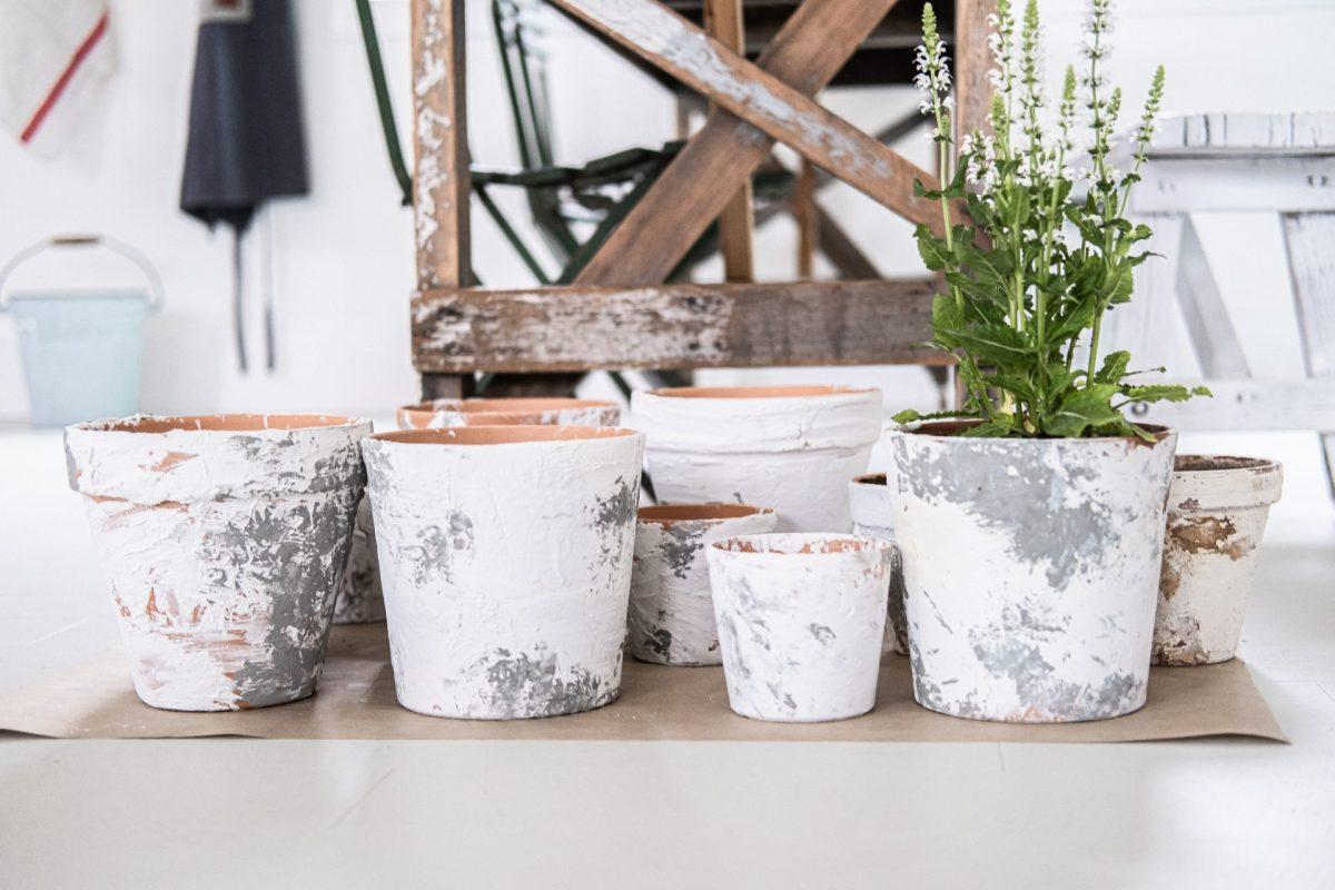 Britt's aged terra cotta flower pots