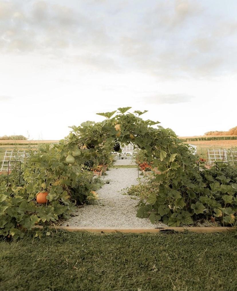 Sugar Maple Farmhouse garden
